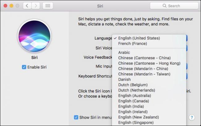 Siri System Preferences