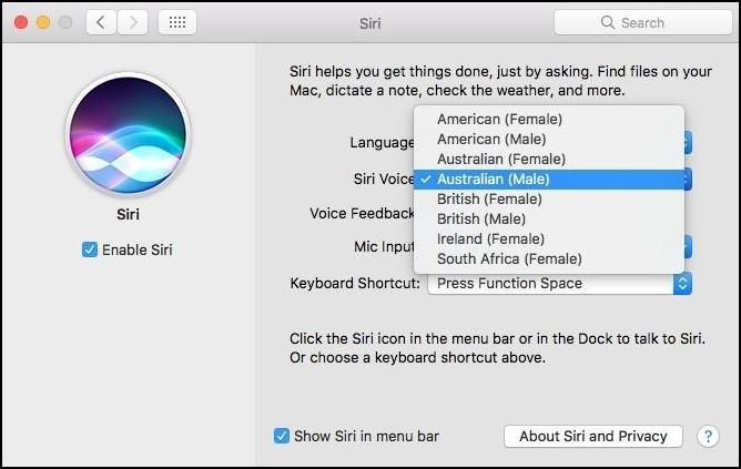 Siri Voice mac