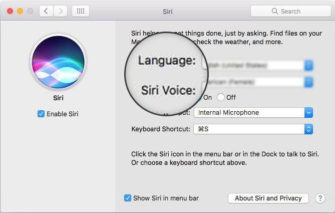 language and siri voice